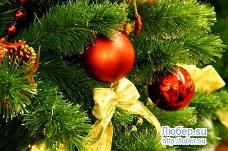 Поздравление с Новым годом и Рождеством жителей Лбюерец!